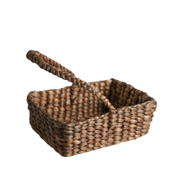 Fruits Basket with Rope Handles